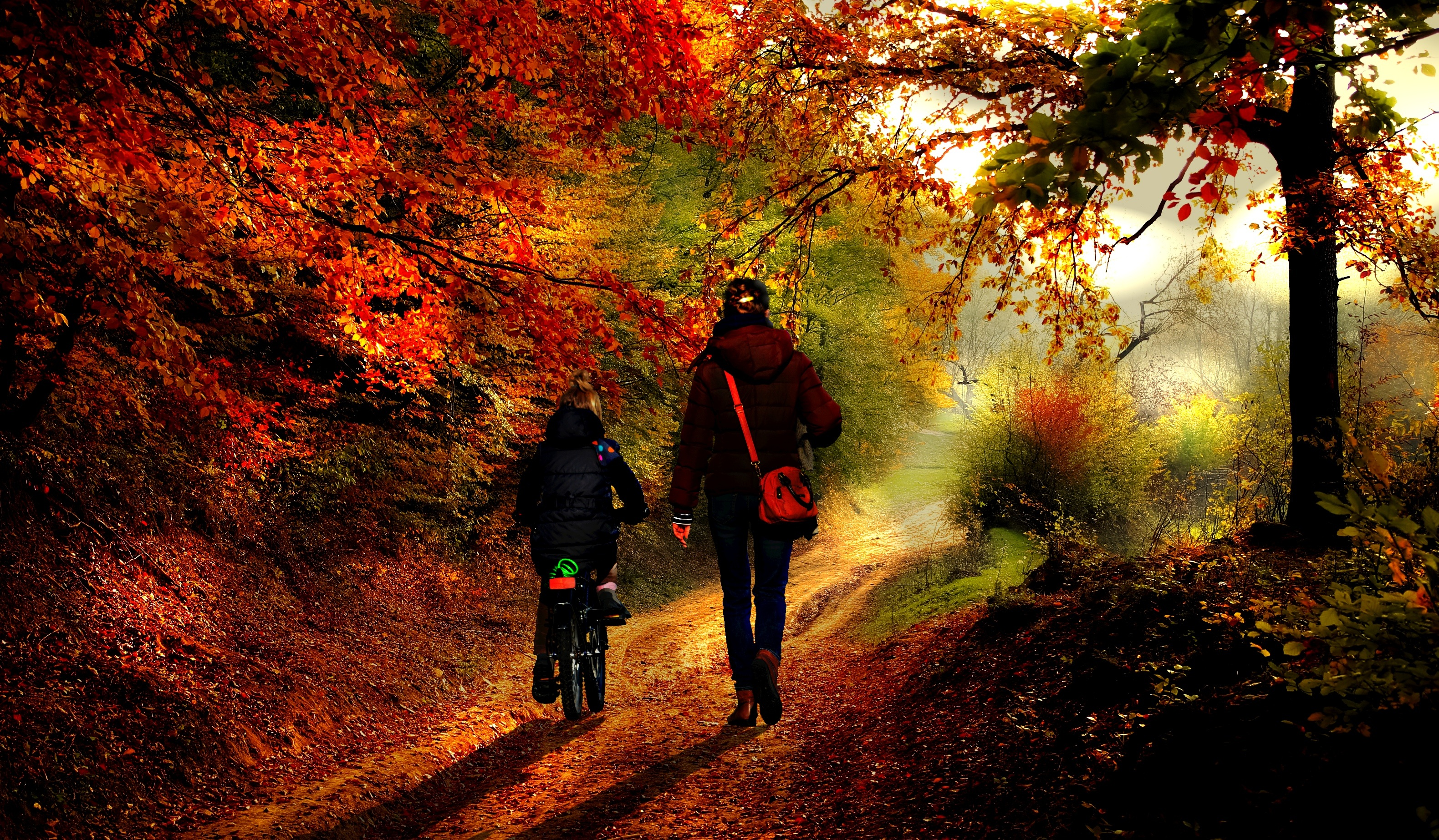 Mother child fall moving walk bicycle
