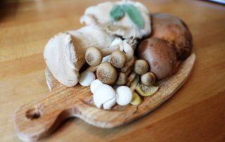 Winter produce fresh mushrooms