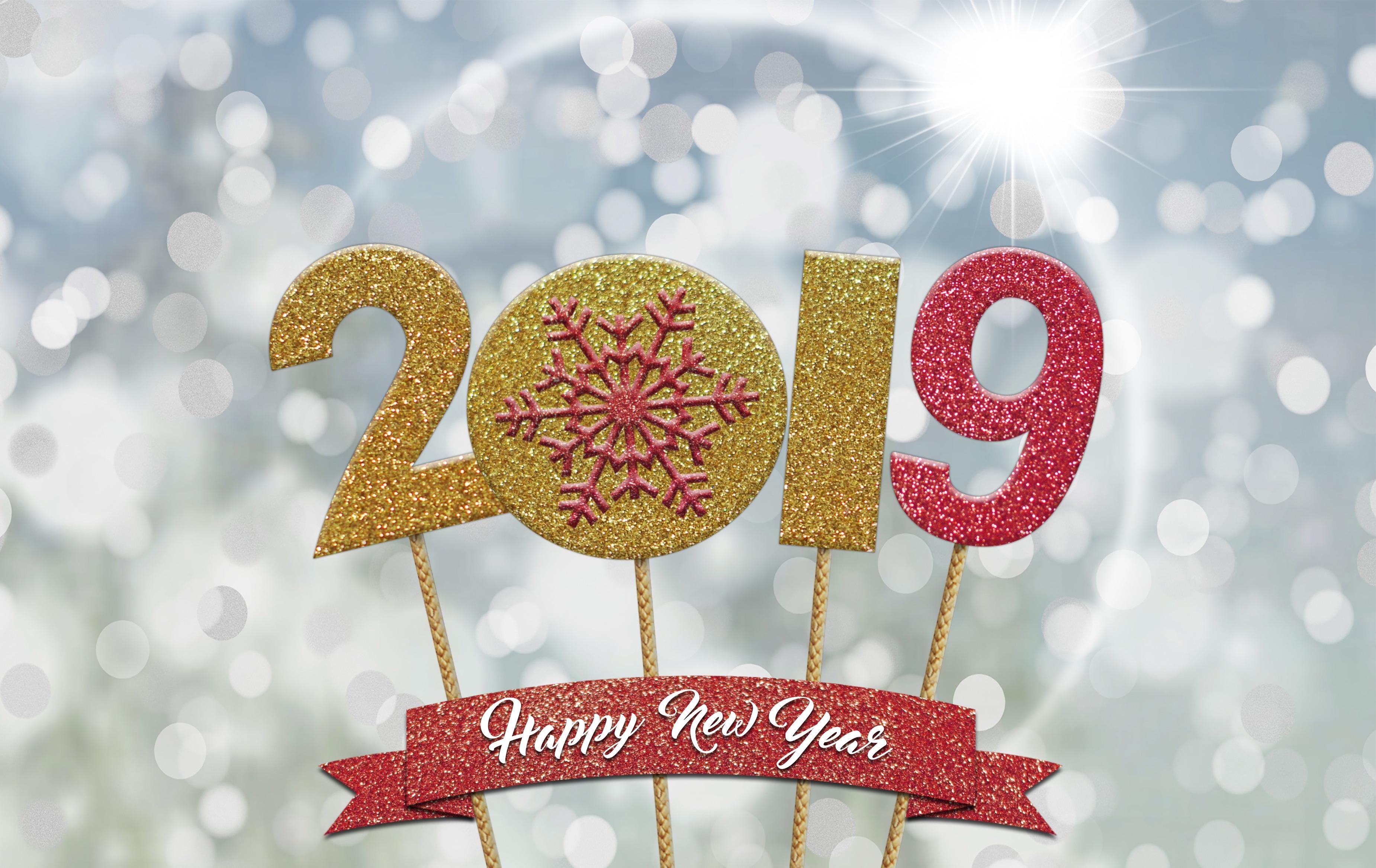 Happy healthy new year 2019